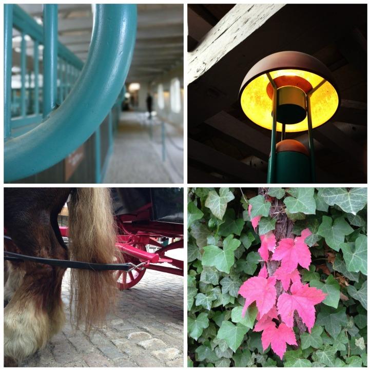 carlsberg stables