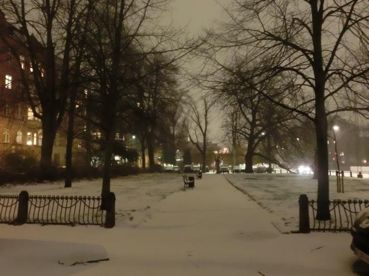week 48 snow night