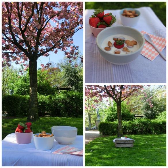 blossom breakfast 2