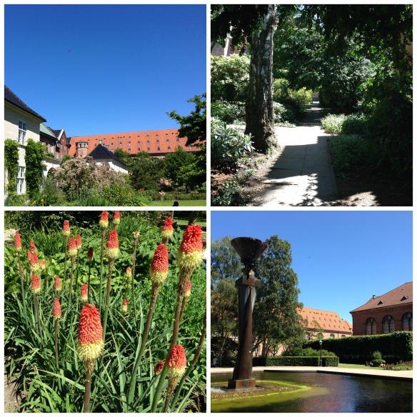 library garden